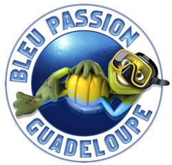 logo-bleu-passion